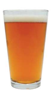 Image of Hunter-Gatherer Trans-Am IPA